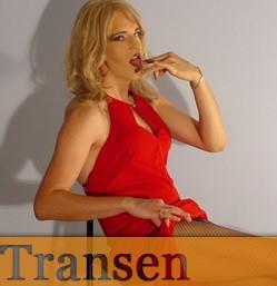 Privater Transen Telefonsex